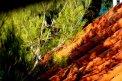 Fotografia: Jednoducho pestrofarebná príroda.., fotograf: Martin Klein, tagy: príroda, tiene,farby,farebná,hra