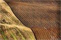 Fotografia: ...field..., fotograf: Vladimír Poliak, tagy: krajinka, pole, Poniky