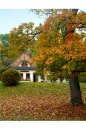 Fotografia: jesenná pohoda, fotograf: Zuzana Olejníková, tagy: jeseň, príroda