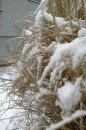 Fotografia: sneh, fotograf: Samuel Hrica, tagy: sneh