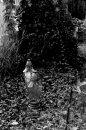 Fotografia: Anonymný hrob, fotograf: Silvia Budayová, tagy: hrob, cintorín, sviečka, lístie