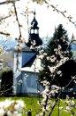 Fotografia: Lietavský kostol, fotograf: Eva Melišíková, tagy: kvety, kostol, slnko